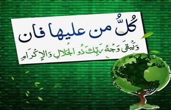 جولة بين الجنة والنار في سورة الرحمن | فيديو