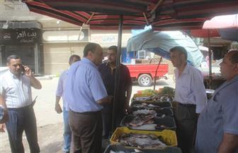 حملة لإزالة الإشغالات بدسوق وإصلاح خطوط الصرف بكفر الشيخ   صور