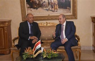 وزير الخارجية يلتقى نائب الرئيس العراقى لتعزيز العلاقات بين البلدين | صور