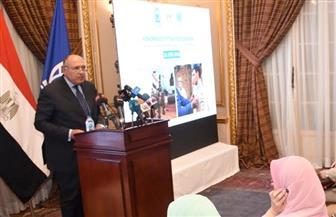 وزير الخارجية: نبحث الحلول السياسية لحل النزاعات ونسعى لبناء شراكة إستراتيجية مع الأشقاء الأفارقة