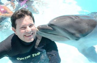 هاني شاكر يسبح مع الدلافين في شرم الشيخ  صور