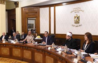 الحكومة: مصر تتسلم القطع الأثرية المنهوبة في إيطاليا