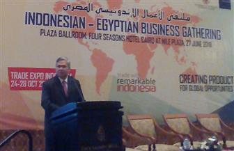 سفير إندونيسيا بالقاهرة: مصر بوابتنا الإفريقية.. ونقدم لها خبرتنا في الإجراءات التقشفية