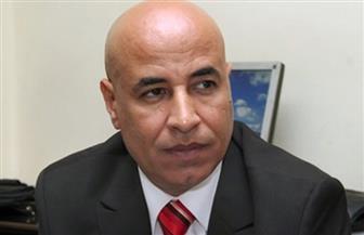 """الجالية المصرية بالسعودية: ثورة 30 يونيو أنهت فشل """"الإخوان"""" الإرهابية .. ونحن جنود مصر بالخارج"""
