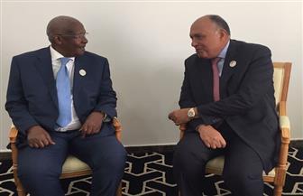 شكري يدعو لإنشاء مجلس رجال أعمال مشترك بين مصر وأوغندا