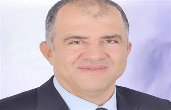 """""""دعم مصر"""" يدعو المصريين للعمل من أجل """"تحقيق أهداف ثورة يونيو"""""""