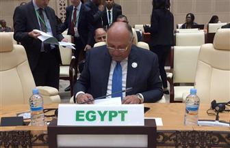 وزير الخارجية: تحية للمرأة المصرية فإحساسها الوطني جعلها في مقدمة الصفوف في ثورة 30 يونيو
