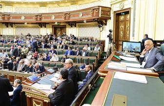 أغلبية مجلس النواب: تحية خاصة لأبناء شمال سيناء لتضامنهم مع الدولة في مواجهة الإرهاب