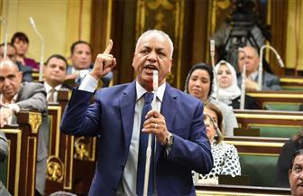 بكري يطالب برؤية متكاملة بشأن الحماية الاجتماعية...ويجدد مناشداته لحل أزمة عمال التشجير