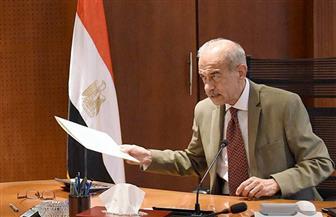 غدا.. لجنة استرداد أراضي الدولة تستعرض نتائج الموجة الـ11 لإزالة التعديات