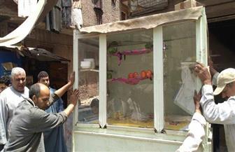 إزالة الإشغالات بكورنيش النيل بمدينة فوه بكفر الشيخ | صور
