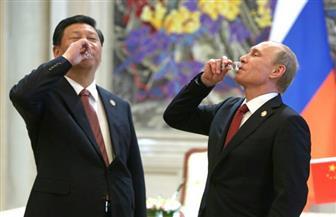 """بوتين يهدي الرئيس الصيني """"شي جين بينج"""" حماما من خشب الأرز"""