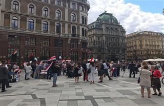 المصريون يحتفلون بذكرى 30 يونيو في فيينا| صور