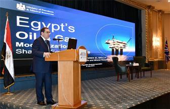 """""""الملا"""": تطوير البنية التحتية يحول مصر لمركز إقليمي لتجارة الغاز والبترول"""