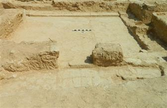 اكتشاف موقع أثري يعود للعصر الروماني في ميت أبو الكوم | صور