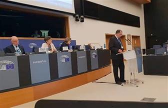 المؤتمر السادس والثلاثون للجنة الأوروبية للطيران المدني يختتم أعماله في فرنسا