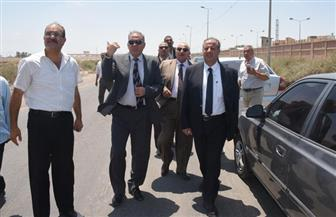 محافظ الإسكندرية يتفقد أعمال الرصف بطريق النهضة غرب المدينة|صور