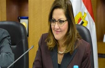 وزارة التخطيط تستعرض تجربة مصر في استراتيجية التنمية المستدامة 2030 بنيويورك