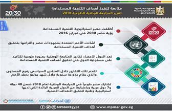 تقرير المراجعة الوطنية الطوعية لمصر  2018 | إنفوجراف