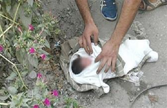 العثور على طفل حديث الولادة بجوار مسجد في المحلة الكبرى