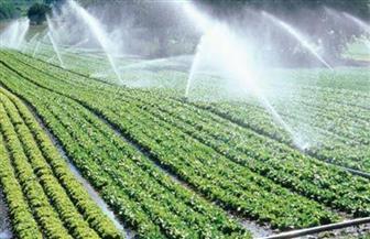 وزير الزراعة: نظم الري الحديثة توفر الأسمدة والعمالة| فيديو