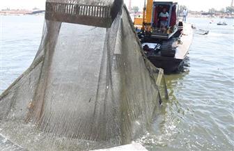 محافظ البحيرة: حملة مكثفة لإزالة الأقفاص السمكية المخالفة من نهر النيل  صور