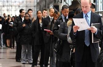 استقرار معدل البطالة في هولندا