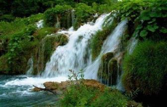 تشبيه الحياة الدنيا بالماء في القرآن الكريم | فيديو