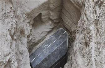 تعرف على كواليس الاكتشاف الأثري بالإسكندرية