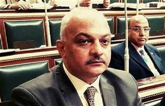 «أزمة صناعة الورق في مصر» في طلب إحاطة بالبرلمان
