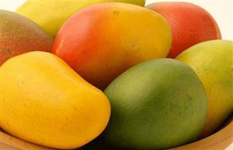 ظهور المانجو في الأسواق.. أسعار الفاكهة اليوم الإثنين 17 مايو 2021