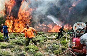 """""""الأزهر"""" ينعى ضحايا حرائق الغابات في اليونان"""