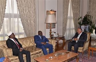 وزير الخارجية يؤكد دعم مصر لبوروندي خلال استقباله رئيس الجمعية الوطنية