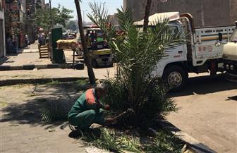 رئيس حي روض الفرج يكلف برفع كفاءة أنشطة قصر الثقافة | صور
