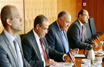 """وزير الخارجية لـ""""مجموعة الصداقة المصرية الألمانية"""": حربنا ضد الجماعات الإرهابية دفاع عن أمننا وأوروبا أيضا"""