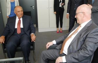 وزير الخارجية يلتقي زعيم الأغلبية في البرلماني الألمانى