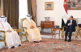 الرئيس السيسي يستقبل وفدا وزاريا من الإمارات | صور