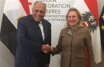 وزير الخارجية يختتم زيارته للنمسا بمباحثات موسعة مع نظيرته النمساوية | صور
