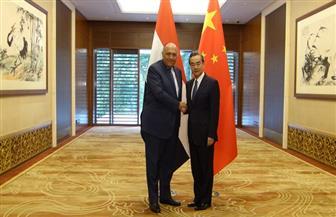 شكري لنظيره الصيني: نثمن دور بكين في المشروعات القومية بمصر