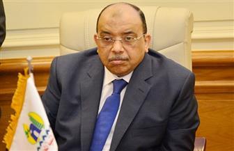 وزير التنمية المحلية يشارك في افتتاح المرحلة الثالثة من برنامج المسئول الحكومي المحترف