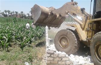 إزالة فورية لـ3 حالات تعد على أراض زراعية بمركز أبوتيج | صور