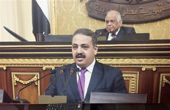 برلماني: الداخلية نجحت في توجيه ضربات استباقية للجماعات المتطرفة