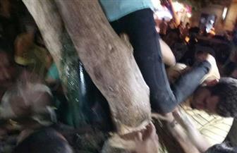 ننشر فيديو إنقاذ الحماية المدنية لطفلة علقت بأعلى شجرة في عابدين