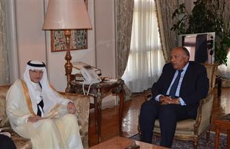 وزير الخارجية يستقبل أمين عام منظمة التعاون الإسلامي | صور