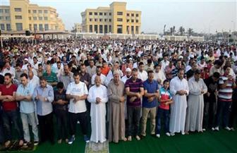 الإسكندرية ترفع حالة الطوارئ استعدادًا لعيد الأضحى المبارك