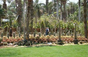 فتح حديقة بانوراما الجيزة خلال أيام عيد الأضحى مجانا