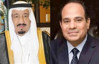 بسام راضي: الرئيس السيسي يجري اتصالا بالملك سلمان لتهنئته بعيد الأضحى