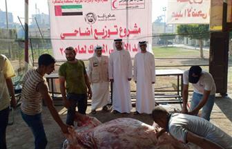 الهلال الأحمر الإماراتي توزع لحوم الأضاحى في عدد من محافظات مصر