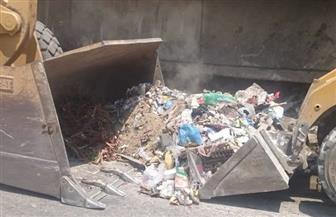 رفع 160 طن مخلفات وقمامة من شوارع وميادين مدينة بني سويف | صور