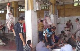 بيطري القليوبية: ذبح 550 رأس ماشية داخل المجازر خلال أيام عيد الأضحى